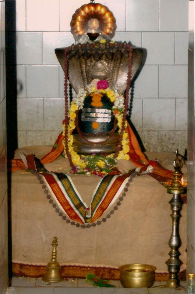 அருட்திரு வில்வநாதீஸ்வரர், மூலவர்